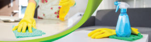 Household cleaning equipment and chemicals